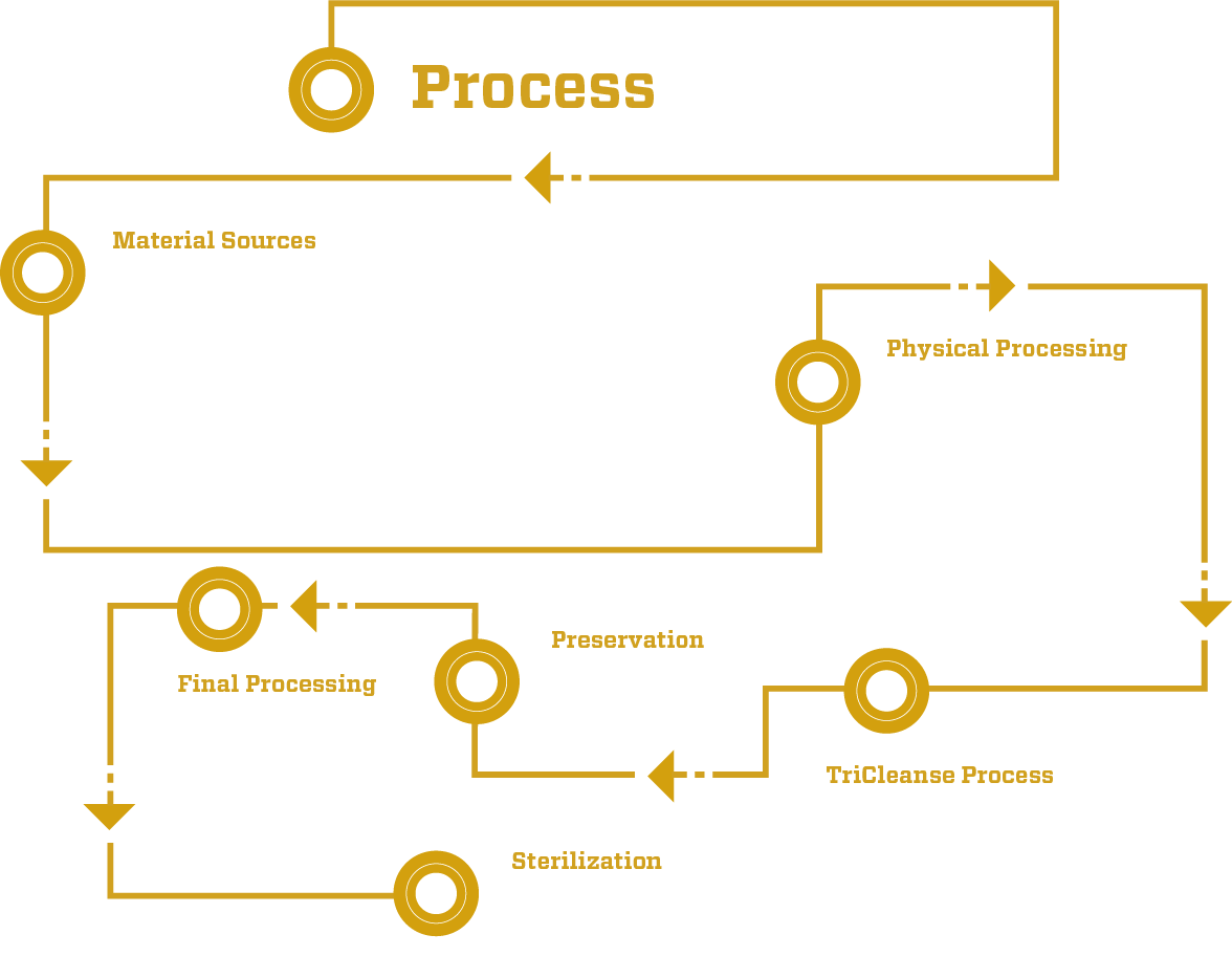 TriCleanse Process Flow Chart